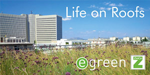 EGREEN january 2021